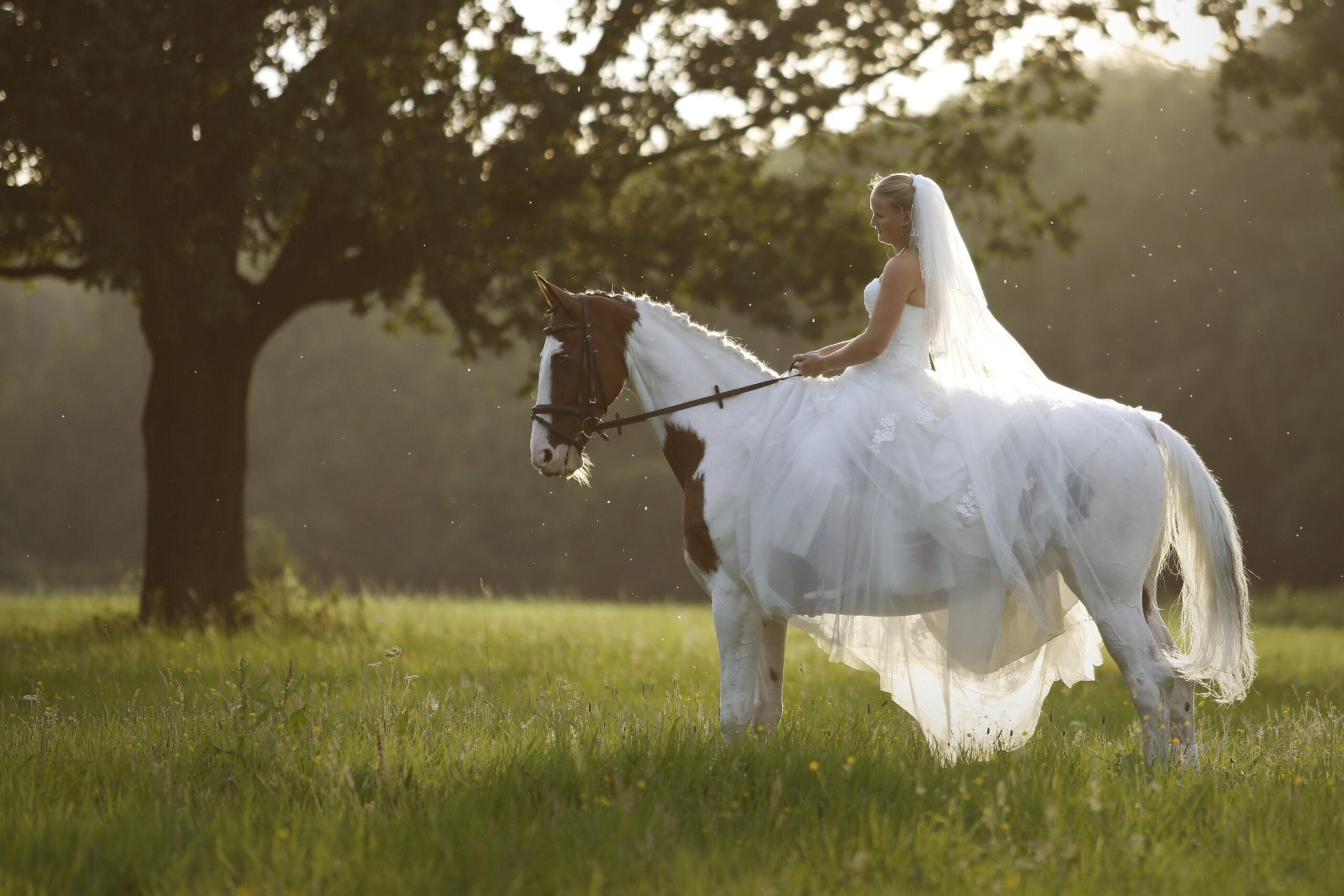 MVDL_WEDDING_7